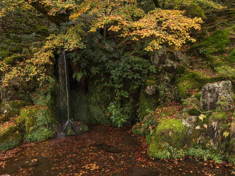 enche-japanese-garden-03.jpg