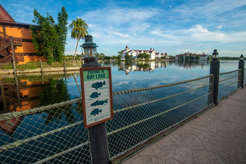 Dinsey Resorts-2-443.jpg