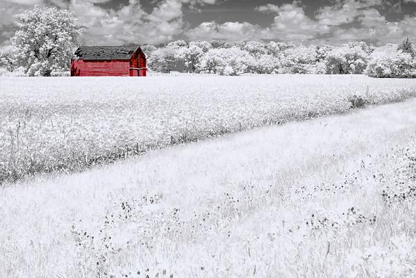 Landscape Samples