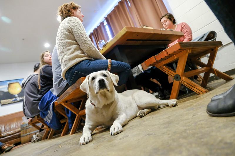 (Photo: Kelly J. Owen | kjophoto.com | @kjophoto)