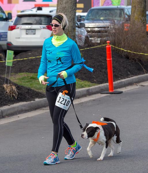 Richmond Spca Dog Jog 2018-636.jpg