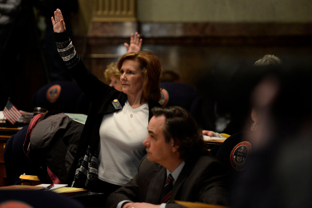 . Senator Linda Newell voting aye during the the 3rd reading of gun measures  in the Denver Senate at the Denver State Capitol March 11, 2013 Denver, Colorado. (Photo By Joe Amon/The Denver Post)
