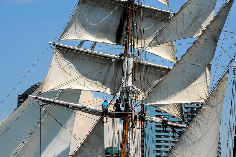 FOS MM 2012 furling sails SD.jpg