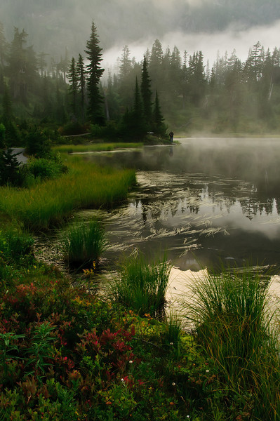 18 Oct 12.  Here's another from the Picture Lake series in the fog. This one was taken roughly three minutes earlier than the first one I shared that was predominantly gray. It can give you an idea as to how fast the fog was rolling in on us. It should be immediately obvious how much more color there is in this image when compared to the other. The two photos were taken in the same tripod holes, ones I created, but the format is different, one obviously landscape and the other portrait. The different formats I think give the scene a very different feel and when combined with the varying amount of fog evoke very different emotions, yet both photos are of virtually the same thing. Next time you find yourself working in weather that is rapidly changing, assuming the conditions in which you find yourself are not hazardous, stay your course and keep shooting, you may find that the best pictures are the ones you would not have normally captured. Nikon D300s; Aperture Priority; 18 - 200;ISO 200; 1/30 sec @ f /14 on a tripod.