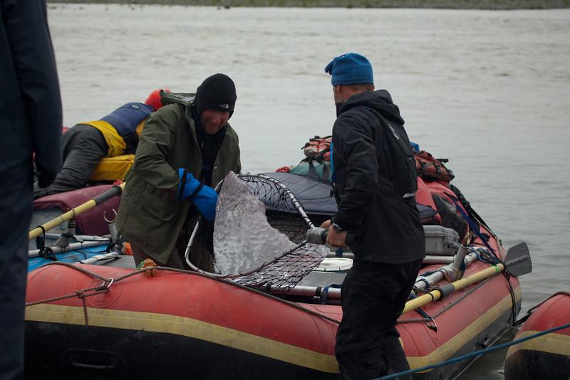 Alaska Copper River-0095.jpg