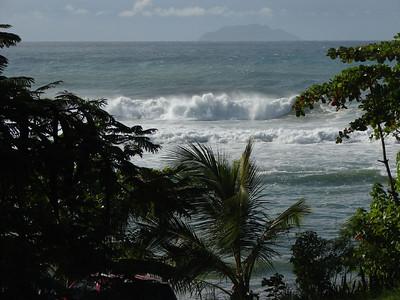 Desecheo Island 2009