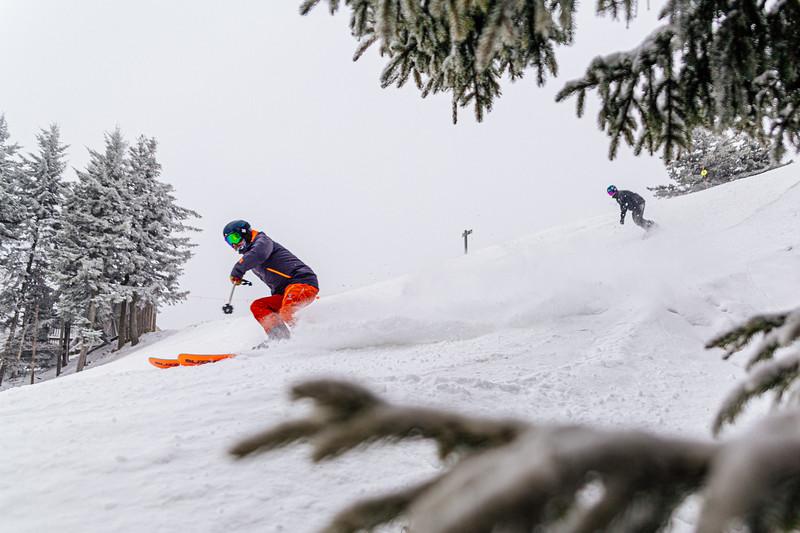 December Snow-4444.jpg