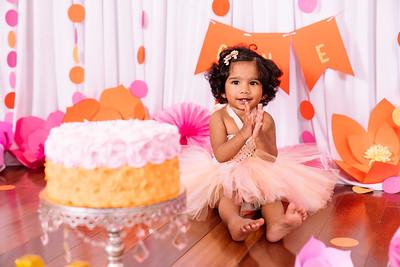 2018 Aneesha 1 year cake smash
