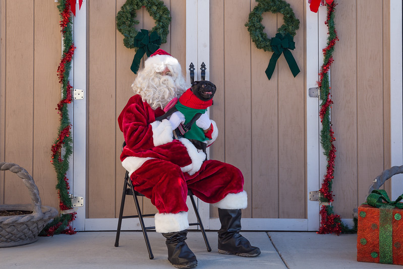 Pet Pictures With Santa-28.jpg