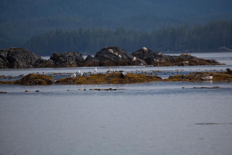 Alaska-121.jpg