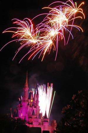 Disney World 2009