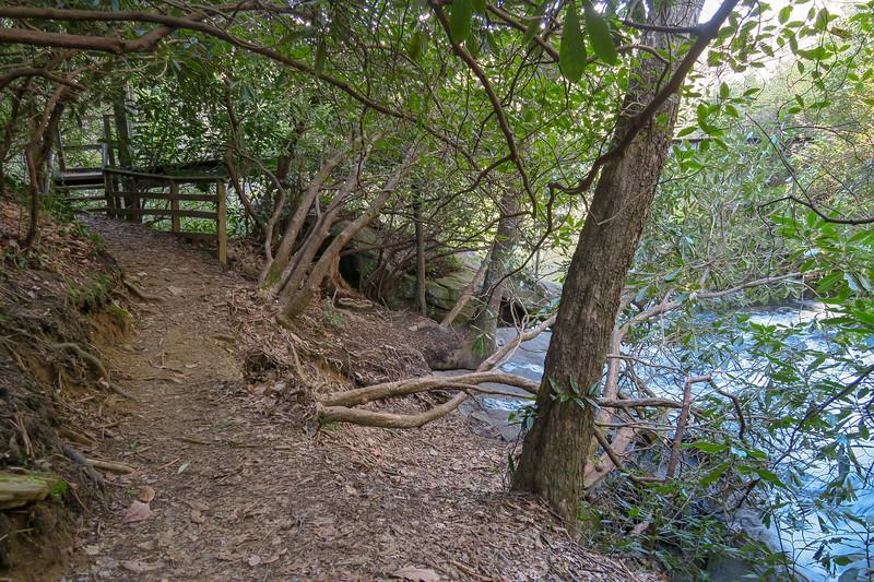 Naturaland Trust Trail @ Raven Cliff Falls Suspension Bridge -- 2,650'