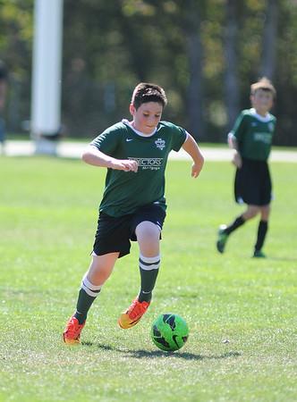 2014 Tigard Youth Soccer (11u)