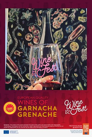 Photos - 9.9.2017 - D.C. Wine Fest - Garnacha