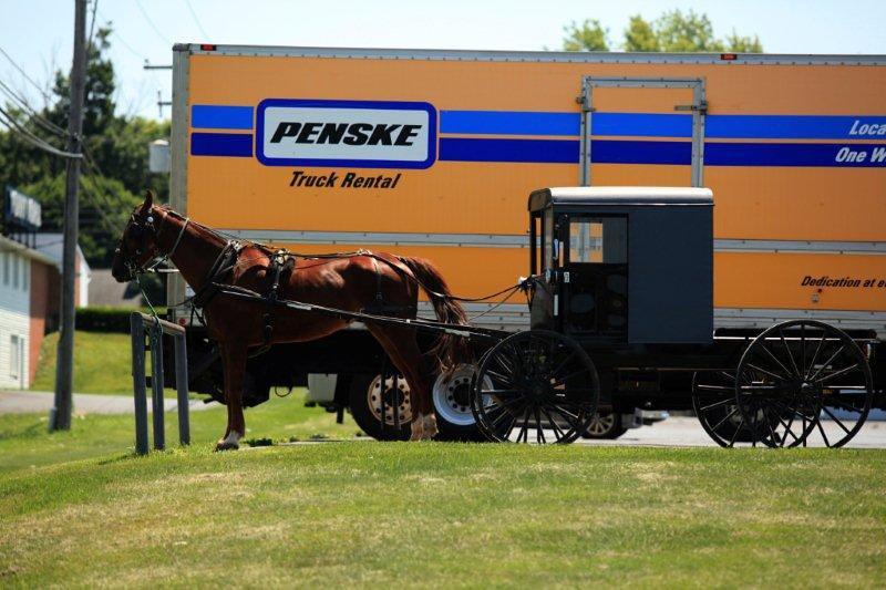 Amish country, PA 6342.jpg