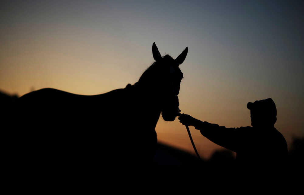 . A worker holds a horse called Fan Fair after it\'s morning workout at Churchill Downs Tuesday, April 30, 2013, in Louisville, Ky. (AP Photo/David Goldman)