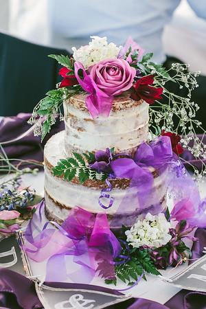 Anna & Mithun - Otari Bush Wedding