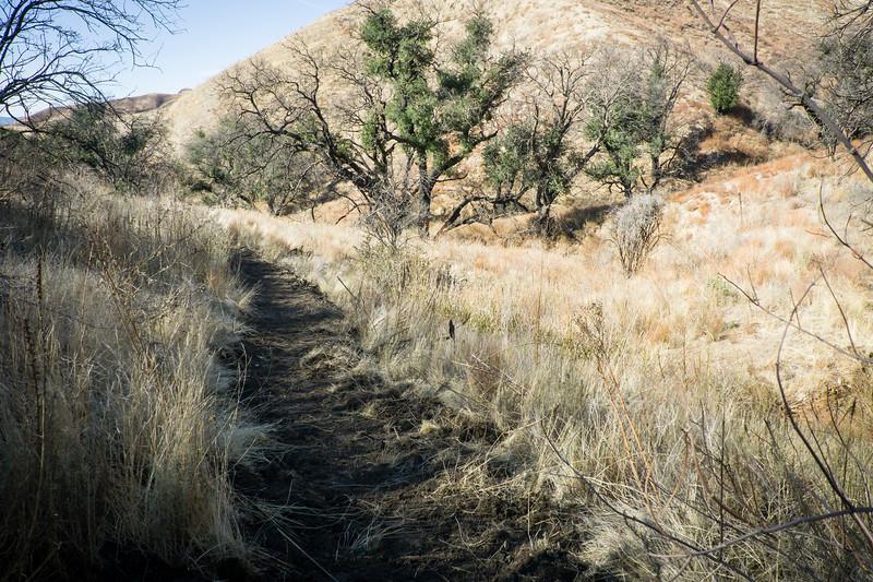 20181201017-Golden Valley Trailwork.jpg