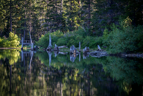 Packer Lake Ca. Tamarack Lakes Ca.