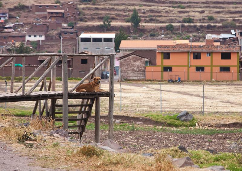 Peru_020.jpg