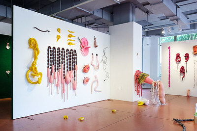 2019-05-02 Stephanie J Williams installation