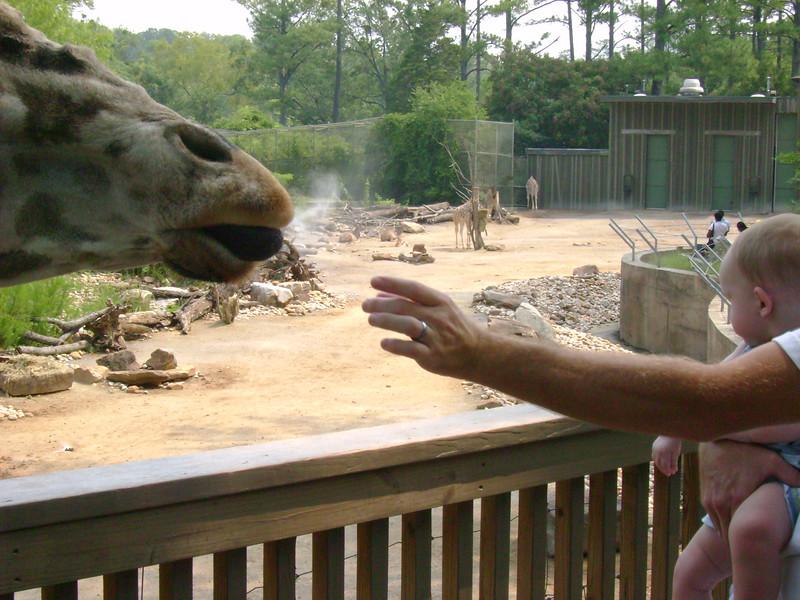 Chris and Aiden feeding the giraffe.