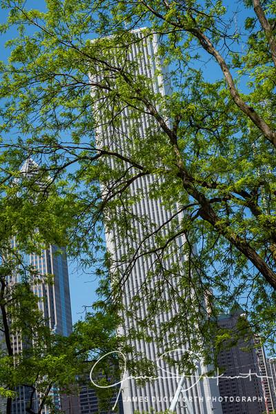 Chicago-8004263.jpg