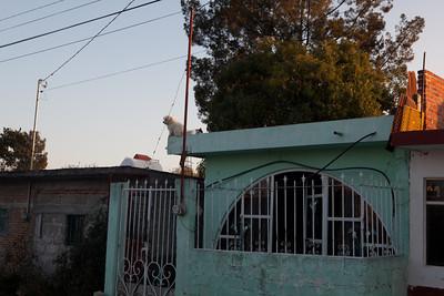 Mexico Christmas 2011
