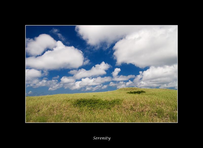 summer-serenity.jpg