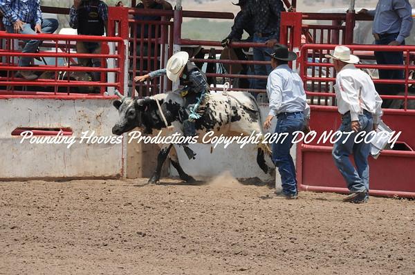 Sierra County 6-22-13 Sr Bulls