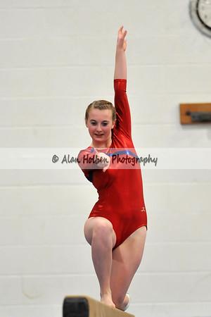 Gymnastics - Mason vs Haslett/Williamston