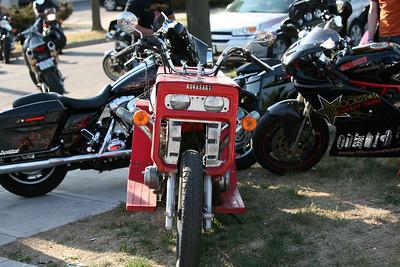 Minnesota Bikes 2009