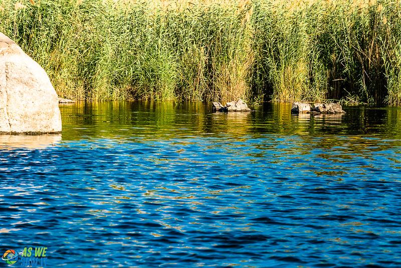 Aswan-04166-13.jpg