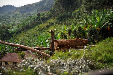 Trip to Bunyonyi Island