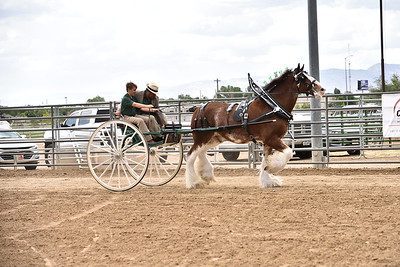 PeeWee Cart