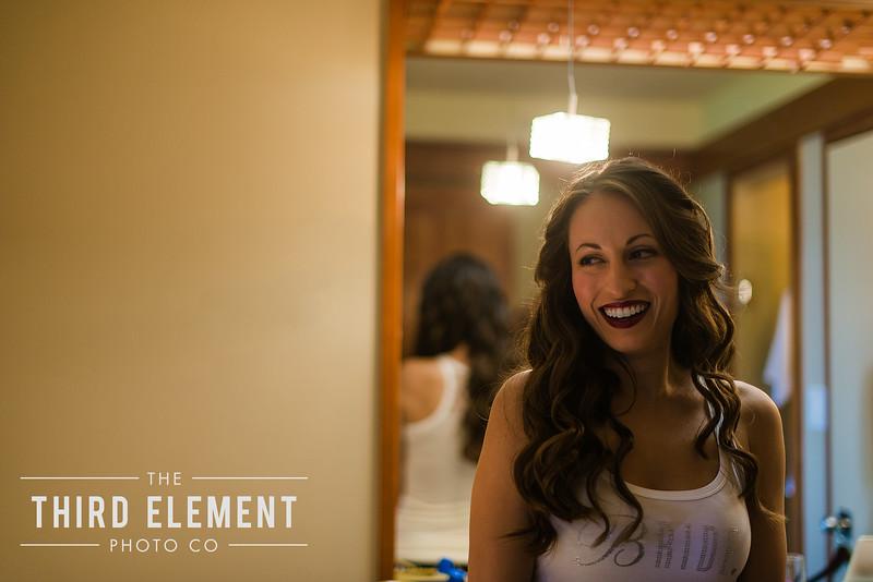 Third Element Photo Co Lina + Rett Carmel Bay Area Wedding Photographer_0008.jpg