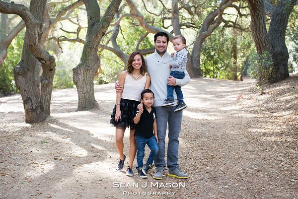 Berger Family December, 2015