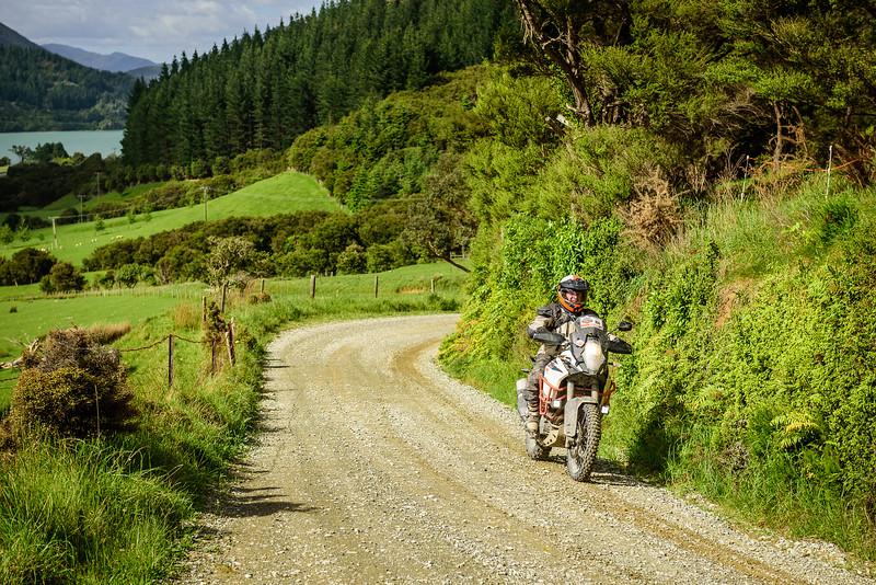 2019 KTM New Zealand Adventure Rallye (1160).jpg