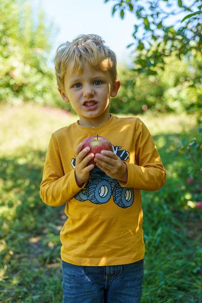 20200930-Apple Picking-153.jpg