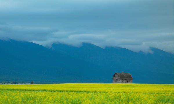 David Reams Photography Landscapes