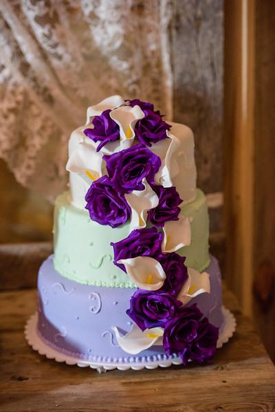 2017-05-19 - Weddings - Sara and Cale 5435.jpg