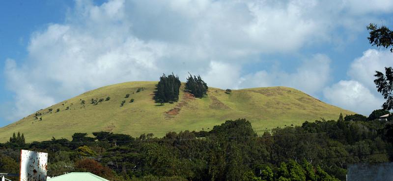 20080416- Hawaii 21- Weds Morning Road Trip DSC_3591-10.jpg