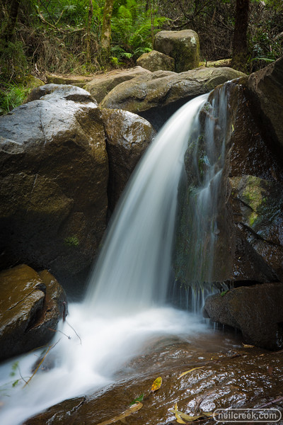 creek151010-050.jpg