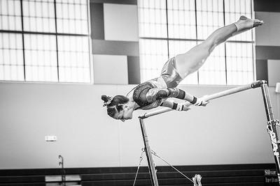 Paige's Gymnastics