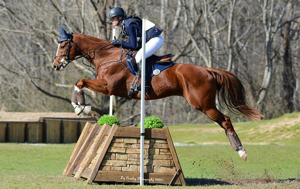 Carl sale horse