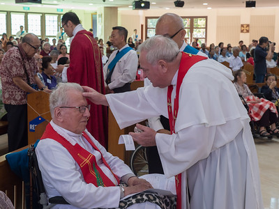 Mass for the Elderly and Sick 2017