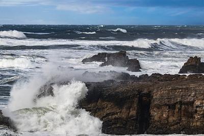Wind, Waves, Wildlife, Wineries