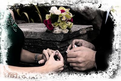 Elahe & Hossein Engagement