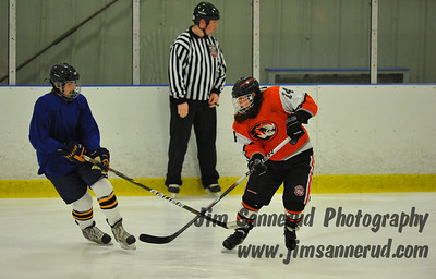 White Plains vs. Carmel Varsity Spring Hockey