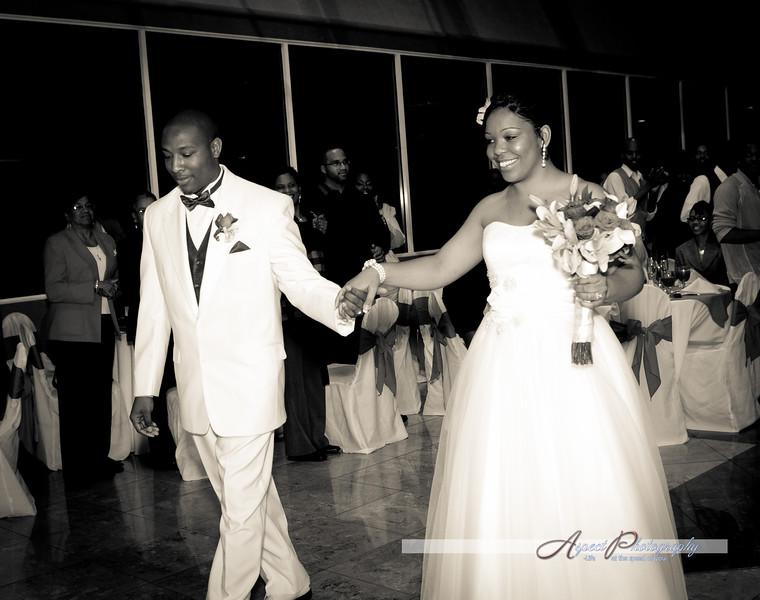 Leslie & Tony wedding reception